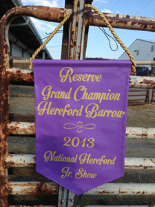 2013 Reserve Champion Hereford Barrow